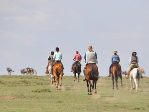9 Day Serengeti Migration Horse Riding Safari in Arusha, Tanzania