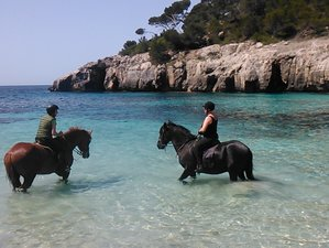 8 Day Horse Riding Holiday with Beautiful Intermediate Trails in Menorca, Balearic Islands