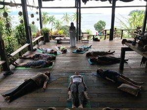 Yoga, Cocina Consciente y Consciencia junto a las ballenas en el Pacífico colombiano