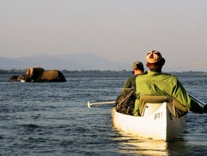 10 Days Walking and Canoeing Safari in Zimbabwe