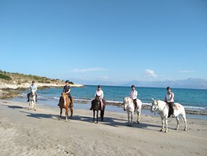 5 Day Swimming with Horses, Natural Horsemanship, and Horse Trekking Holiday in Corfu, Ionian Island
