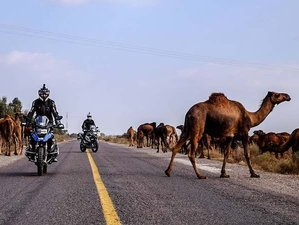 14 Day Best of Morocco Guided Motorbike Tour