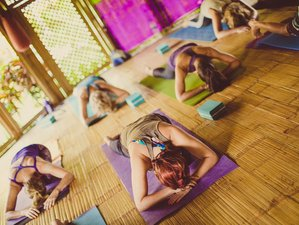 9 Days Ocean Inspired Yoga Retreat in Sri Lanka