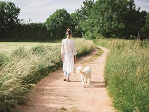 8 Day Bespoke Individual Wellness Retreat with Detox and Yoga in Glastonbury, Somerset