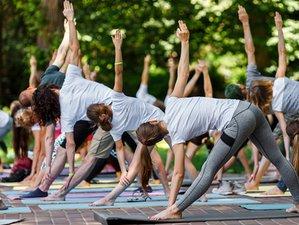 10 Days Emotional Balance, Mind Training, and Yoga Retreat in Bali, Indonesia
