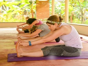 7 Days Meditation and Yoga Retreat in Varkala, India