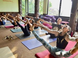 21 Day 200-Hour Yoga Teacher Training in Mysore