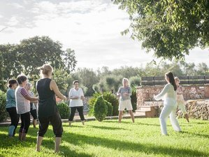 6 Days Refreshing Serenity Yoga and Meditation Holiday with The Now Retreats in Mallorca, Spain