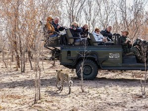3 Days Best of Sabi Sands, Adventurous Safari in South Africa
