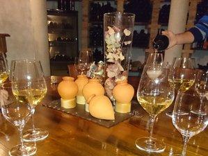 6 Days Wine Tours Slovenia