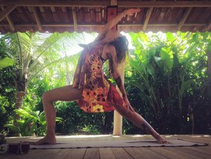 4 Days Solo Traveler's Meditation and Yoga Holiday in Limon Area, Costa Rica