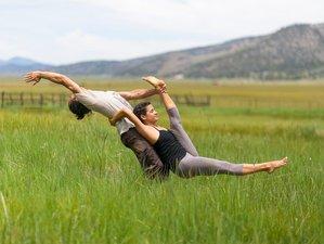 4 Days Spring Rejuvenate Yoga Retreat in California, USA