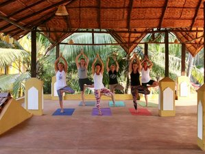 8 Days Detox and Yoga Retreat in Goa, India