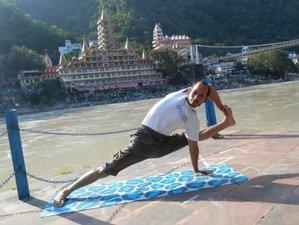 28 Tage 200-Stunden Yogalehrer Ausbildung in Dharamsala, Indien