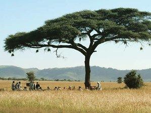 6 Days Big Five Safari Tour in Northern Tanzania