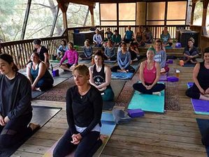3 Days Summer Solstice Women's Weekend Yoga Holiday and Wine Tasting in Wilbur Springs, California