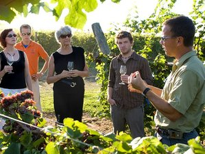 10 Day Luxury Wine Tour in Buenos Aires and Mendoza, Argentina