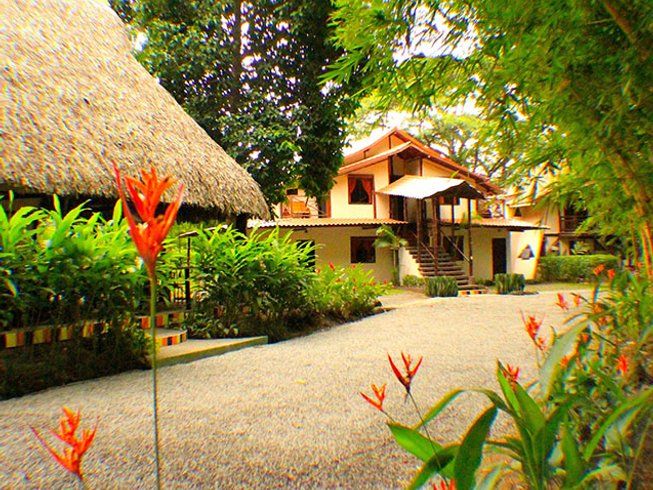 8 Days Pura Vida Yoga Retreat Costa Rica