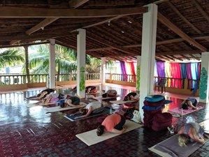 29 Day 300-Hour Hatha, Ashtanga Vinyasa, and Vinyasa Flow Yoga-Based Teacher Training in Goa, India