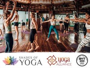 25 Tage 200-Stunden Yogalehrer Ausbildung in Ubud, Bali