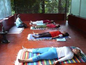 20 Days 200-Hour Yoga Teacher Training in Kerala, India