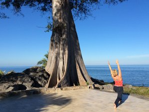 8 Days Relax, Release, Restore, and Renew Yoga Retreat in Nayarit, Mexico
