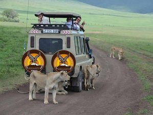 3 Days Highlights of Selous Game Reserve Safari and Boat Cruise in Tanzania
