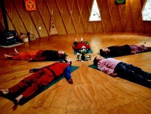 10 jours-125h de formation de professeur de yoga nidra en Nouvelle-Zélande