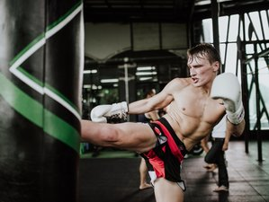 2 Weeks Professional Muay Thai Training in Bangkok, Thailand