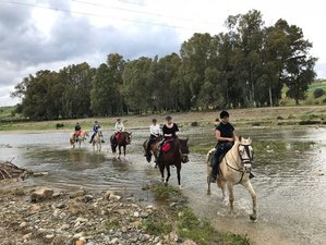 8 Day Starter Trail Horse Riding Holiday in Fuengirola, Malaga, Costa del Sol