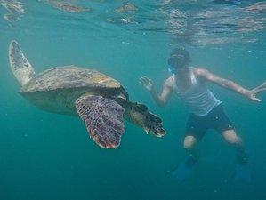 5 Day La Plata Island Wildlife Tour in Ecuador