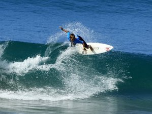 3 Days Tours and Surf Camp in New Zealand