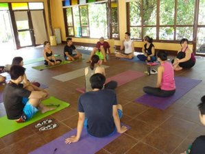 4 Day Wellness and Yoga Holiday in El Nido, Palawan