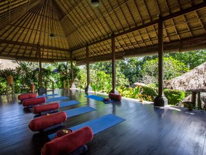11 Day Ayurvedic Revive Program in Badung, Bali