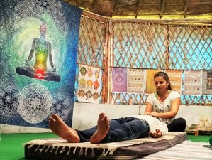 11 Day Reiki Teacher Training Level I, II, III and Yoga in Rishikesh