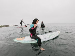 8 Days Beginner Week - Spanish Class and Surf Group Camp in Pichilemu, Chile