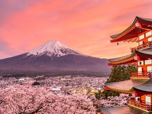 13 Days Springtime Yoga Holiday in Japan