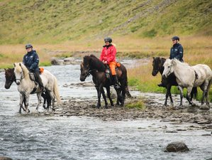 4 Day Mountain Challenge Horse Riding Holiday Along Forgotten Trails in Skagafjörður
