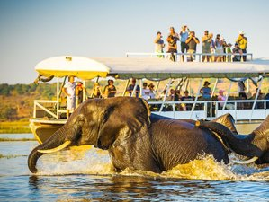 8 Days Okavango Delta and Victoria Falls Serviced Camping Safari Tour in Botswana and Zimbabwe