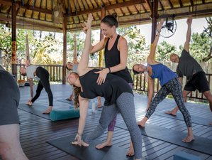 33 Days 200-Hour Vinyasa Yoga Teacher Training in Nusa Lembongan, Bali