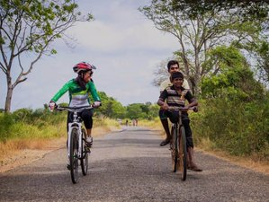 6 Day Safari and Leisure Cycling Holiday in Sri Lanka