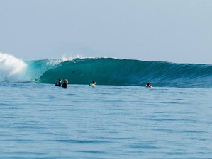 15 Days Group Surf Camp in Mentawai Islands, Indonesia