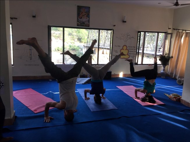 60 Days 500-Hours  Yoga Teacher Training in India