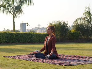 13 días de música, danza y retiro de yoga en India