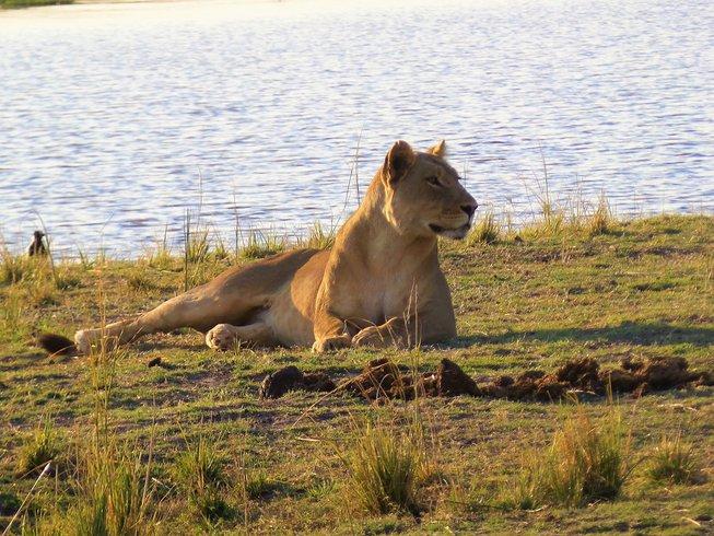 Multi-country: Zambia & Botswana