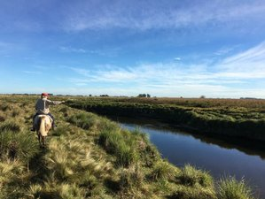 4 Day Rural Horse Riding Adventure on a Beautiful Estancia in Olavarria, Argentina
