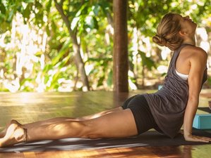 11 Days 85-Hour Prenatal Yoga Teacher Training in Panama