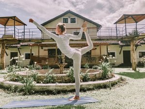 6 Day Horse Mountain Yoga Retreat in the Avenue of the Volcanoes