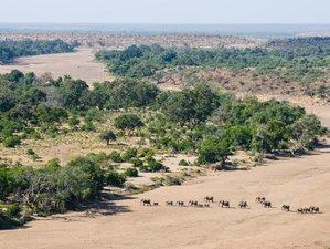 7 Day Beautiful Yoga Safari Retreat in Northern Tuli Game Reserve