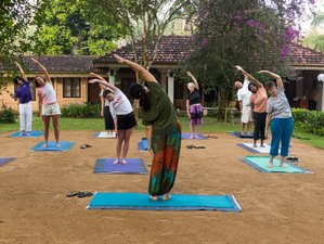 11-Daagse Detox & Yoga Retraite in Sri Lanka